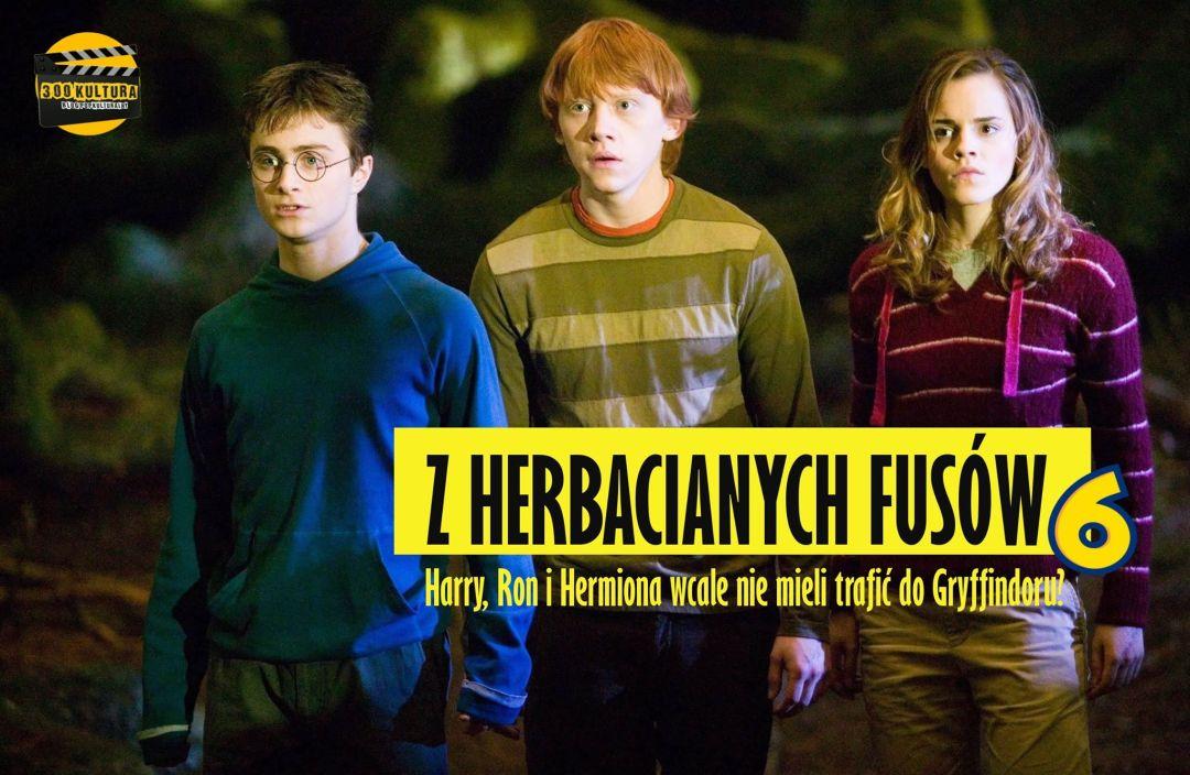 harry, ron i hermiona 3
